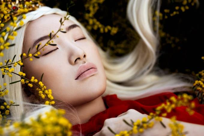The Red Queen by ElaImage - Image Of The Month Photo Contest Vol 43