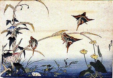 Hokusai kacho-e