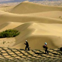 China's Effort to Transform Deserts into Farmlands