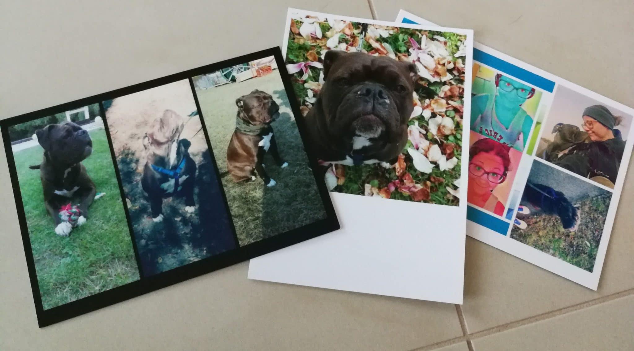 Ihre Personliche Foto Postkarte Direkt Versenden Cewe Ch