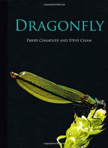 Dragonfly by David Chandler and Steve Cham