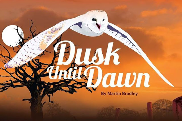 Dusk Until Dawn by Martin Bradley - Review