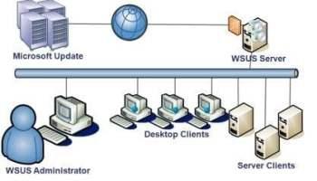 Windows Server Update Services (WSUS)