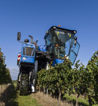 Machine à vendanger dans les vignes