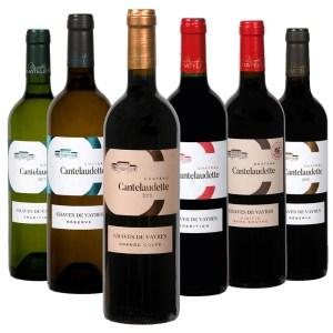 6 bouteilles de vins rouge et blanc