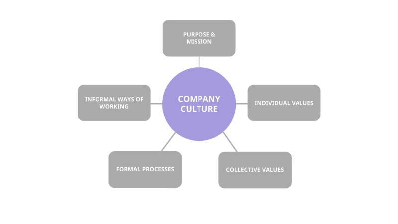 Components of an organizational culture