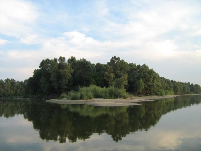 Gornje Podunavlje – priroda, tradicija i riblji specijaliteti