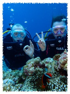 Ishigaki discover scuba diving