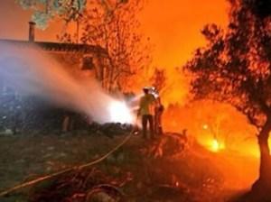 Incendi forestal a Vilopriu