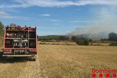 Incendi de vegetació de Saus, Camallera i Llampaies