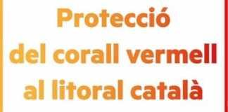 ERC Roses vol que es protegeixi el corall vermell