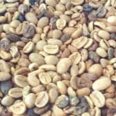 Esse é um lote de café comercial cheio de defeitos