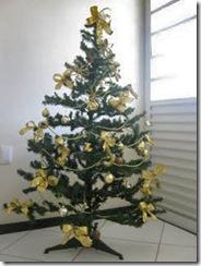Estrelas recicladas na árvore da Meirinha