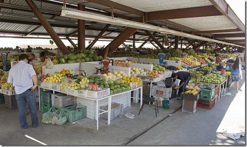 Vista do pavilhão de frutas do mercado público central