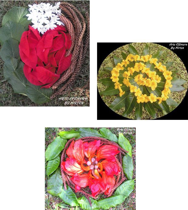 Mandalas variadas de folhas e flores da Arte Efêmera