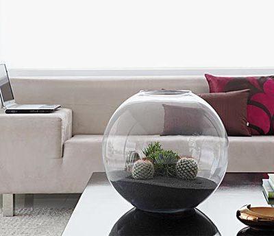 terrarium_aquario1