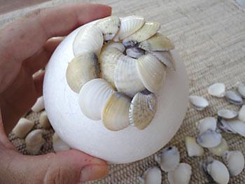 Continue colando as conchas em espiral