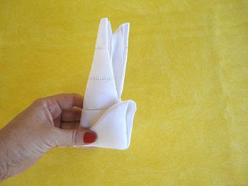 Junte os lados direito e esquerdo dobrando o guardanapo ao meio