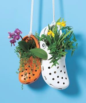 Sandália estragou e virou vaso de flores