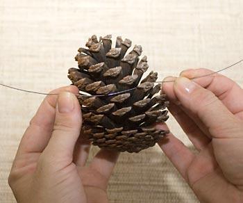 Amarre um arame na pinha