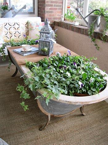 Banheira vintage se transforma em mini jardim
