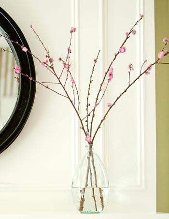 Um simples vaso e galhos de floradas