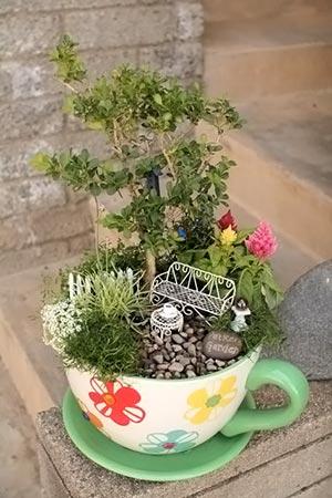 Jardim de fantasia com bonsai dentro de xícara