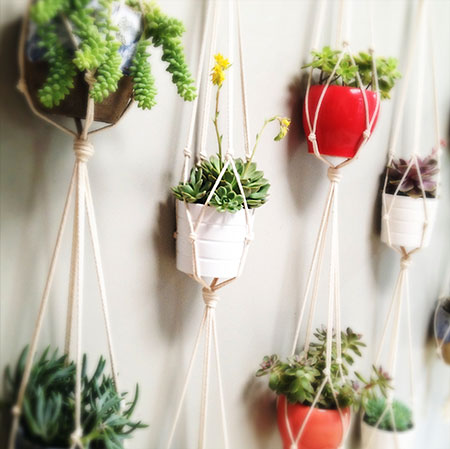 Detalhe do jardim vertical com vasos