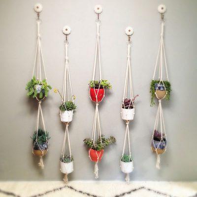 Como fazer um jardim vertical com vasos