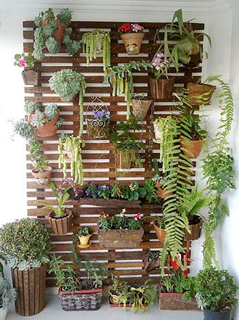 Painel para plantas em madeira de demolição