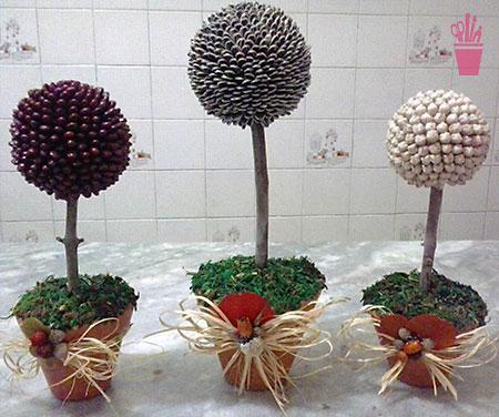 Topiarias de sementes únicas