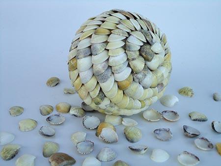Faça uma bola com conchas