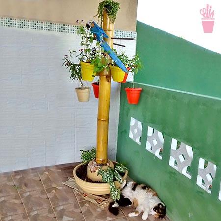 Coluna de bambu para suporte de vasos