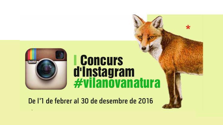 vilanovanatura concurs fotografica 2016 imatge 2 V02