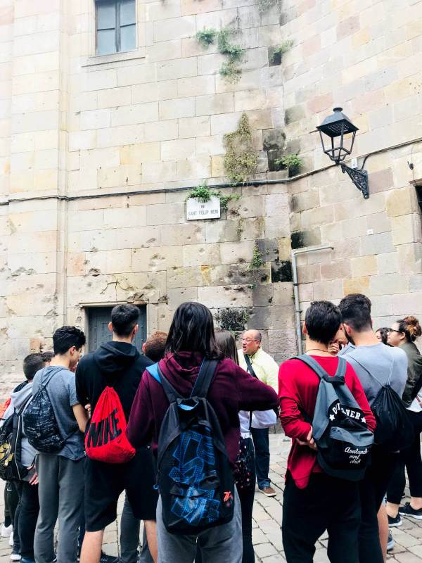 Institut Pla de les Moreres Ombra del vent mai18-V11