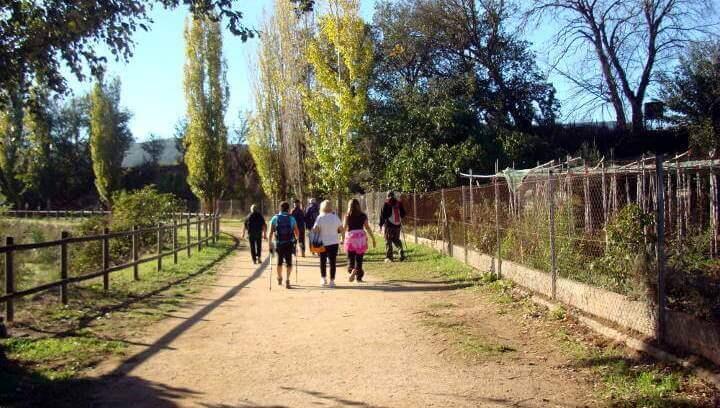 Caminada amb el CAP de Vilanova del Camí. Imatge d'arxiu