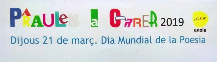 Imatge del cartell Paraules al carrer