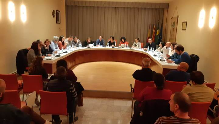 Ple Ordinari 11 mar19 (10)