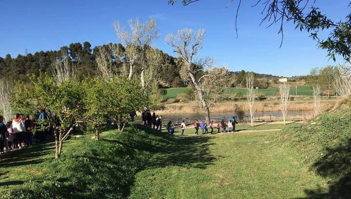 Jornades Ecologiques Pompeu Fabra abril 2019 (3)