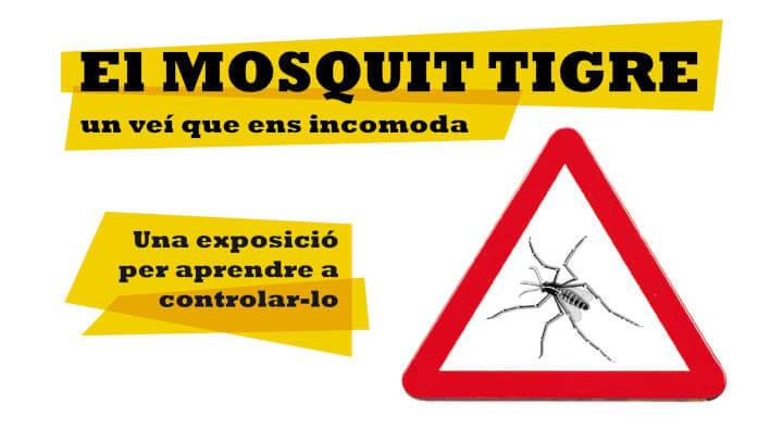 Mosquit tigre campanya 2019