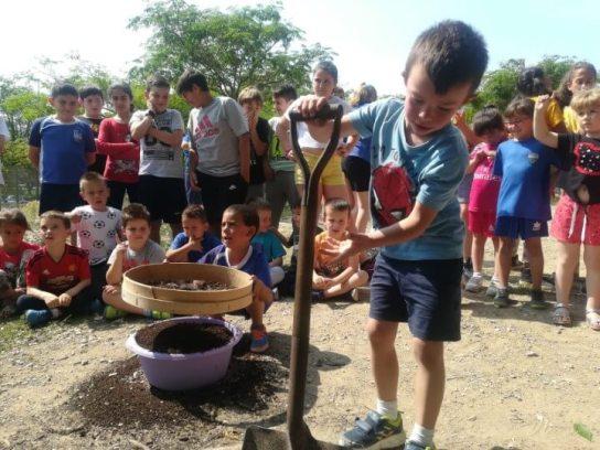 Pompeu Fabra compost 2019 (3) (Custom) (1)