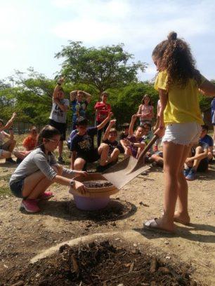 Pompeu Fabra compost 2019 (5) (Custom)