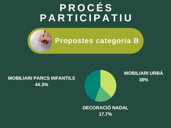 PROCES PARTICIPATIU categoria B
