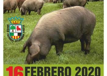 matanza UCE 2020