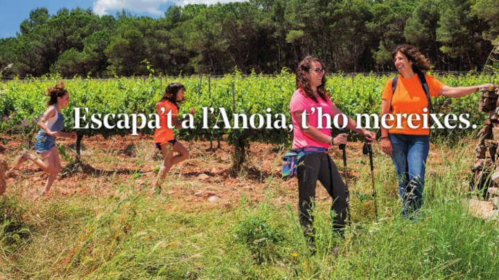 Escapat a Anoia - Consell