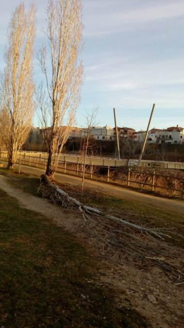 actuacions brigada parc fluvial feb21 2