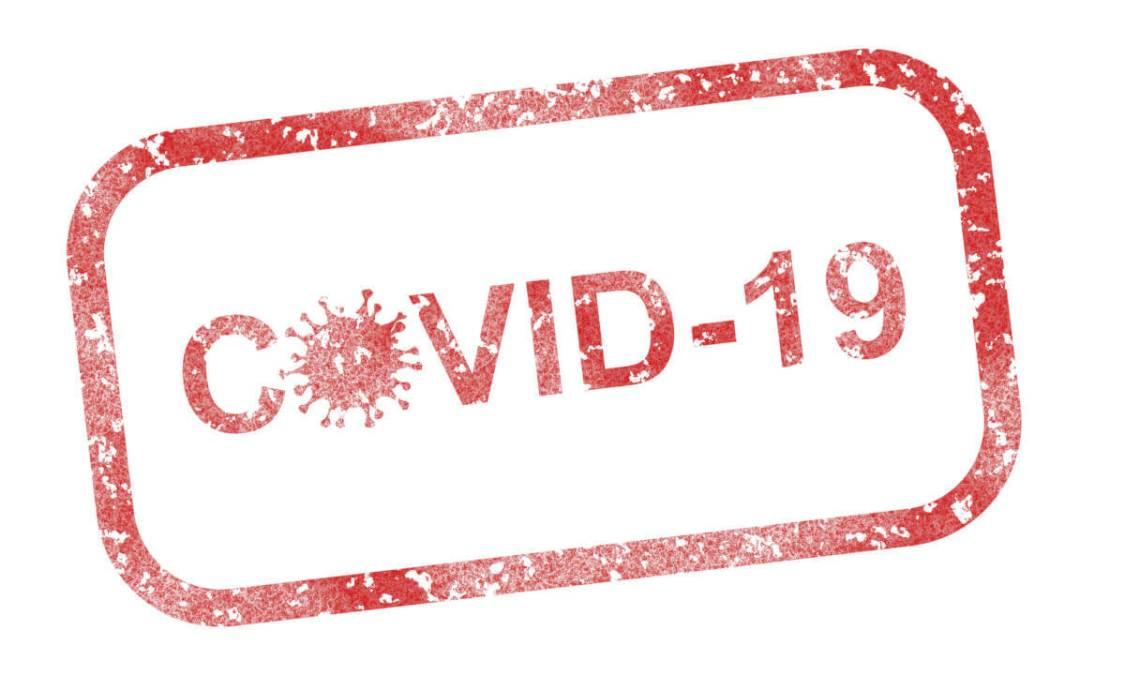 covid-19-4960254_1920 - Imatge de Pete Linforth en Pixabay-1