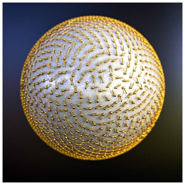 Richard Devonshire 2019 collection Swarm Intelligence