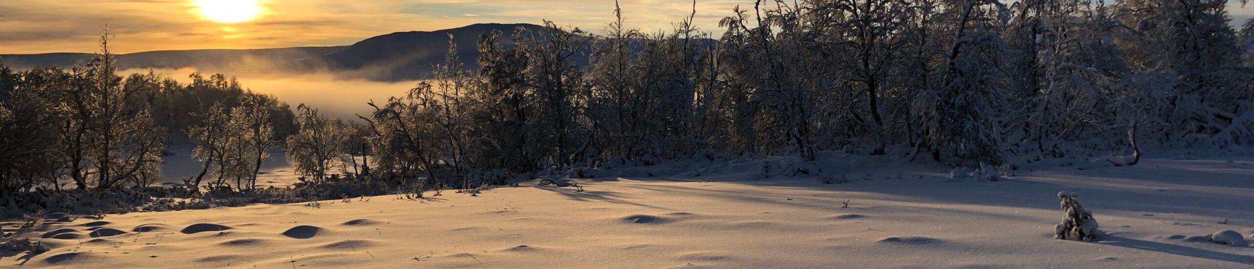 Soluppgång i Fjällnäs