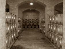 Wine Tasting Umbria